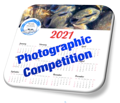 Comp 2020 logo thru Word